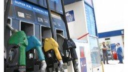 altText(¿Qué sucederá con la nafta cuando termine el congelamiento del precio?)}