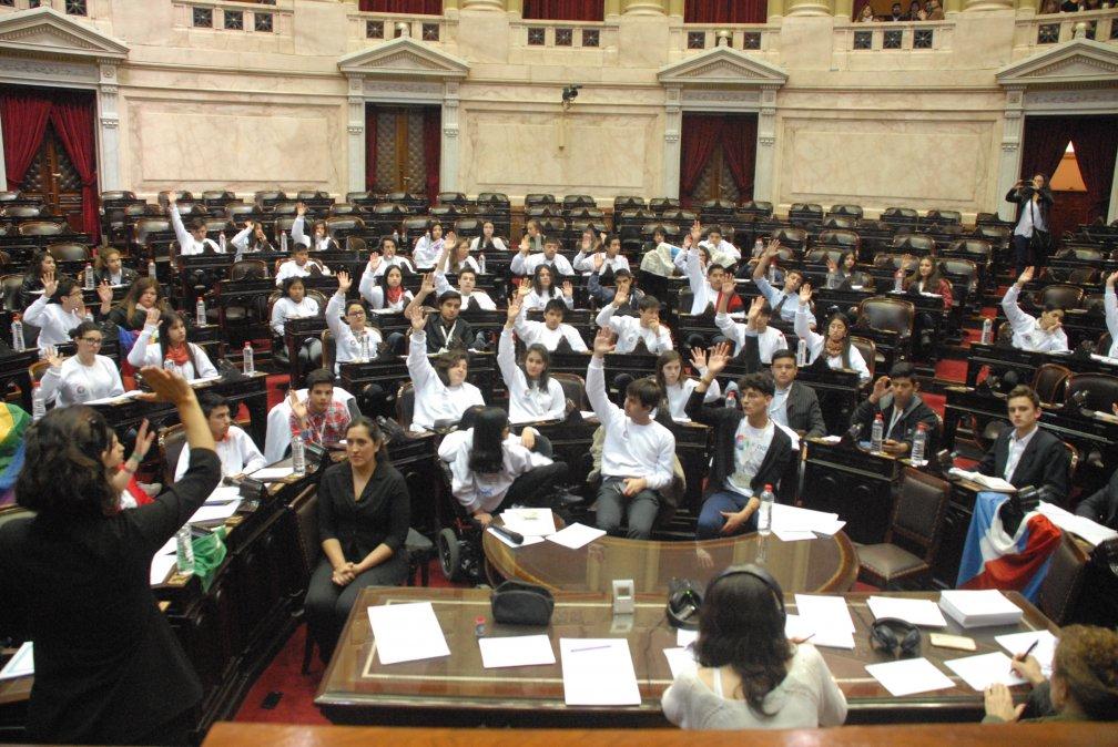 Joven de Dolavon forma parte del Parlamento Federal Juvenil del Inadi