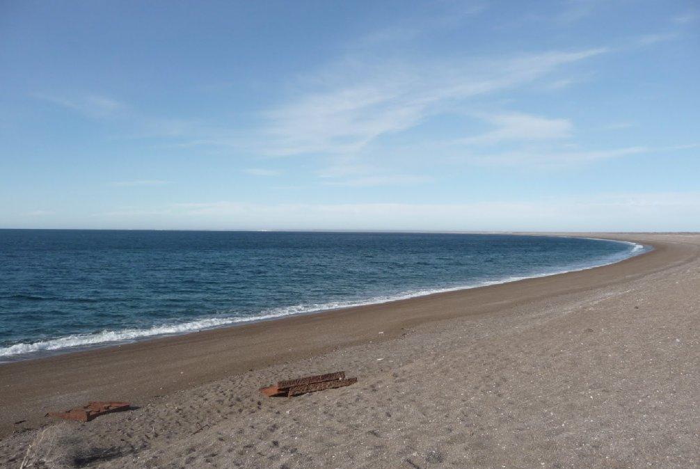 Se recomienda no extraer moluscos en Puerto Lobos