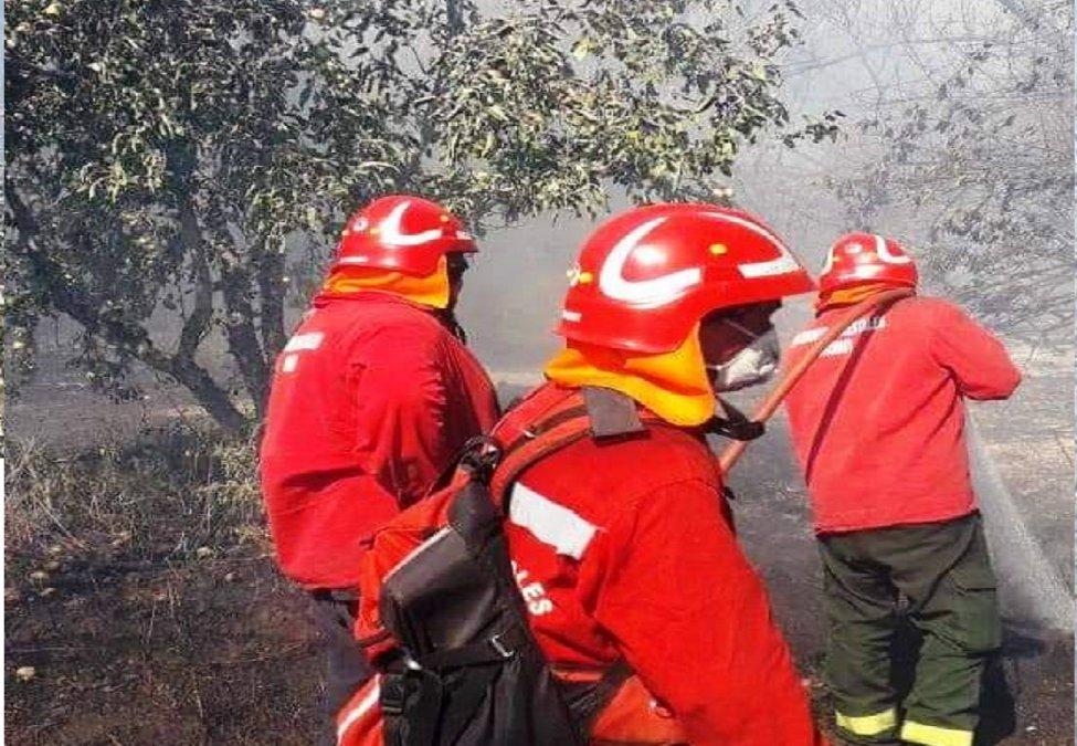 Lago Puelo: Brigadistas controlaron el incendio