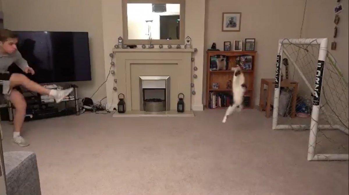 Chris Dixon jugando con su mascota.