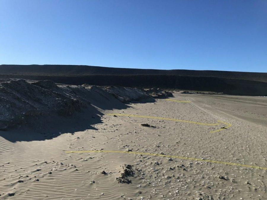 El proyecto de sustentabilidad presentado a nivel internacional muestra la recuperación de las dunas que hay que realizar.