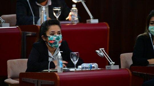 Goic aseguró que Sierra quiere manejar la agenda de la Legislatura