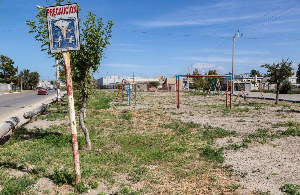 La Municipalidad de Comodoro Rivadavia comenzará en el barrio Stella Maris con un ambicioso plan de forestación urbana.
