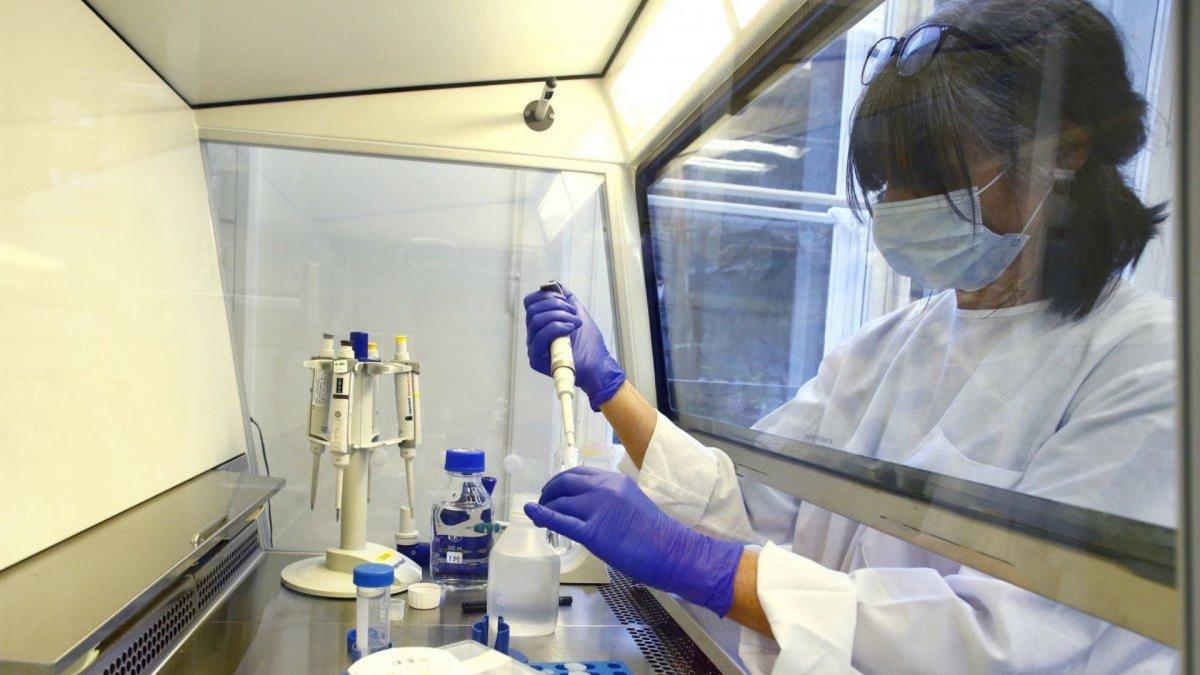 Coronavirus: Chubut reporta 387 nuevos contagios y 8 fallecidos