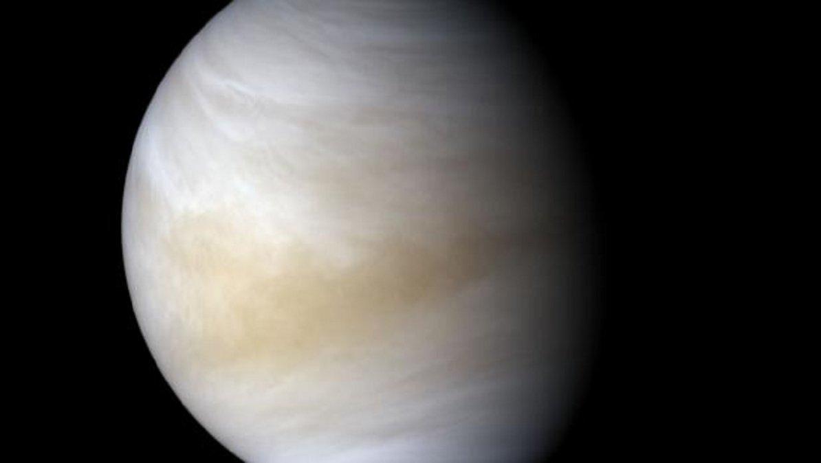 Descubren indicios de vida en Venus.