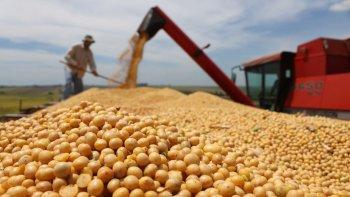 El Gobierno anunciará la baja de retenciones para la soja y la carne