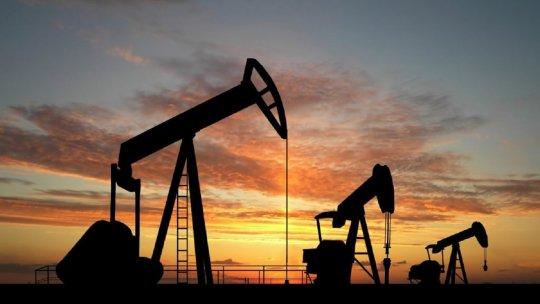 El Gobierno Nacional analiza aflojar restricciones a empresas petroleras y mineras.