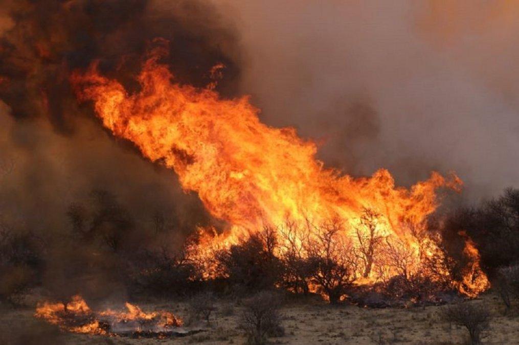 El Servicio de Manejo del Fuego ahora pertenece a la cartera de Ambiente