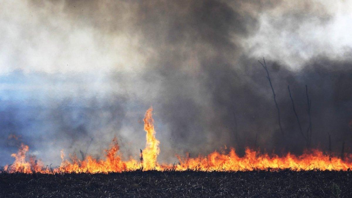 Continúa el intenso trabajo de bomberos y brigadistas para controlar los incendios en Tucumán.