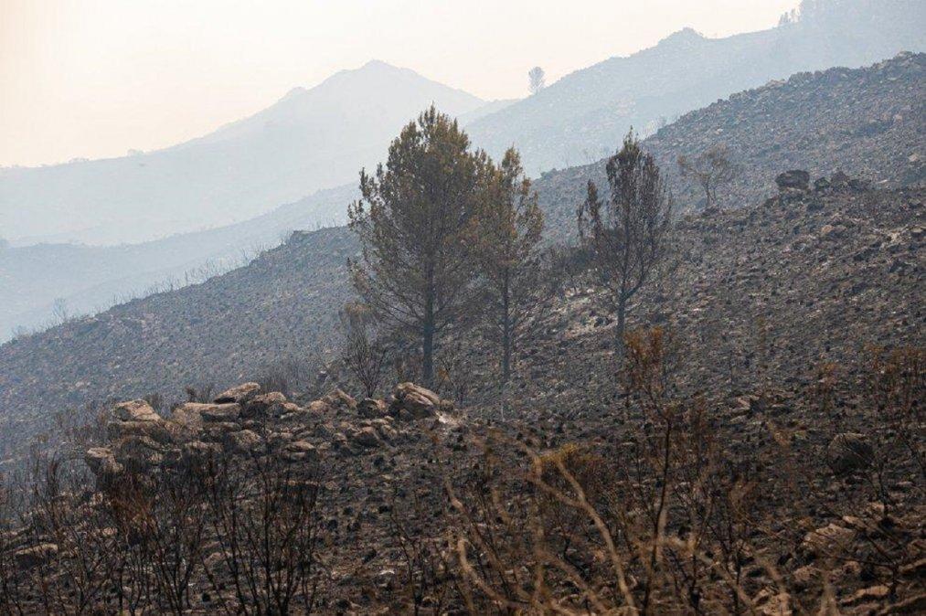 Volvió a llover después de cinco meses y se extinguieron los incendios forestales