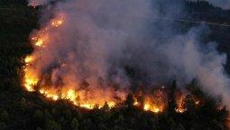 altText(Chubut: En lo que va del año ya se registraron 12 incendios forestales )}