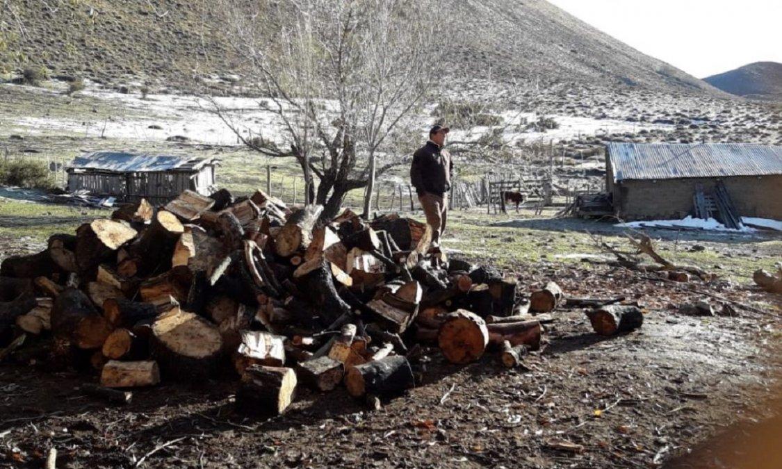 Vecinos de Epuyén reclaman que no reciben la leña que les corresponde del Plan Calor.