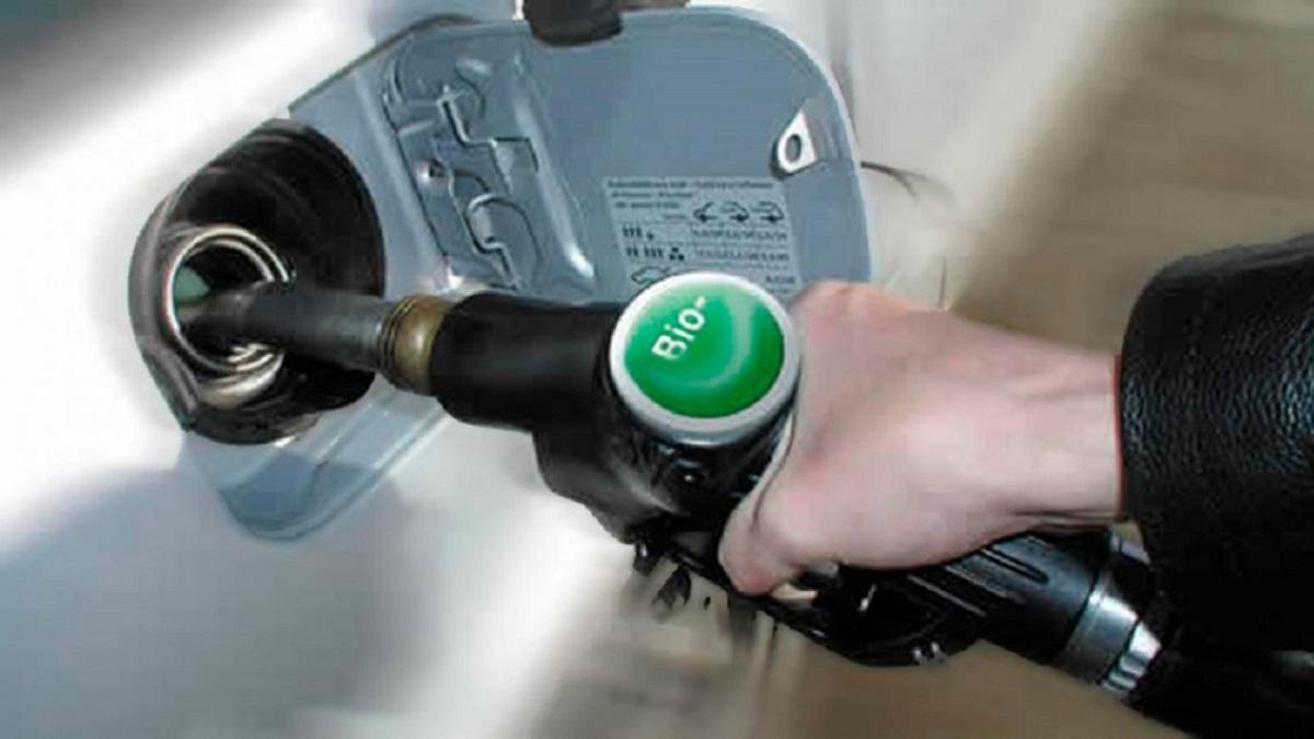 El Gobierno prorrogará la vigencia de la ley de Biocombustibles.
