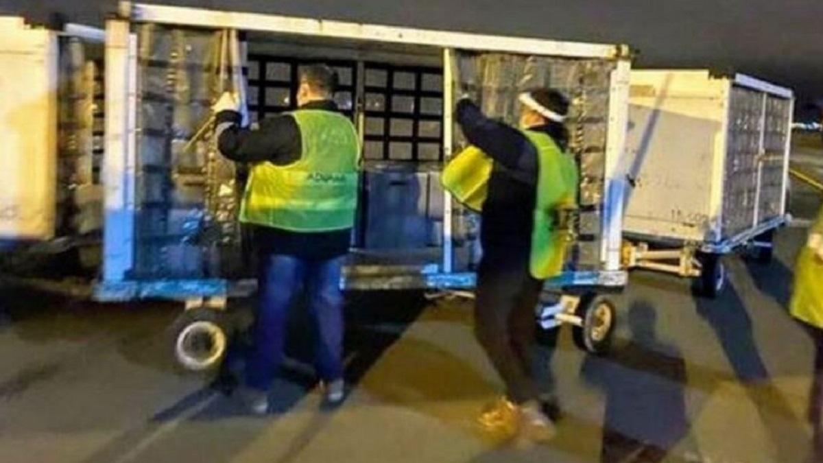 La ANMAT aclaró que pasó con los respiradores que donó Messi