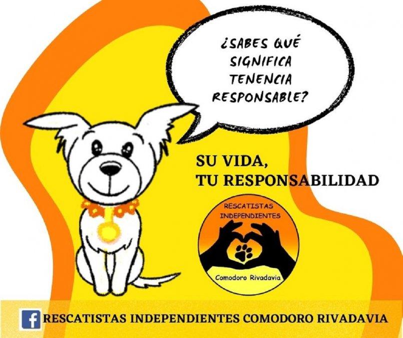 Rescatistas Independientes lanza la campaña Su vida