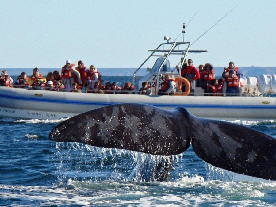 Chubut está dentro de los lugares más visitados este fin de semana largo