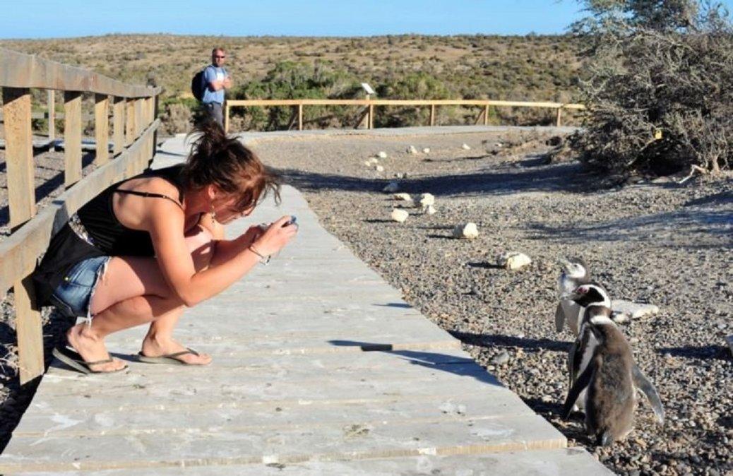 Ocupación plena en todos los destino turísticos de Chubut para el fin de semana largo.