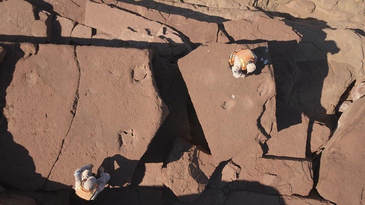Prefectura encontró huellas prehistóricas de un dinosaurio en la Patagonia.