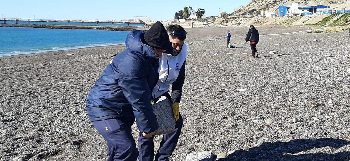 Cuadrillas de la Municipalidad llevaron adelante la limpieza de la playa de Km.3
