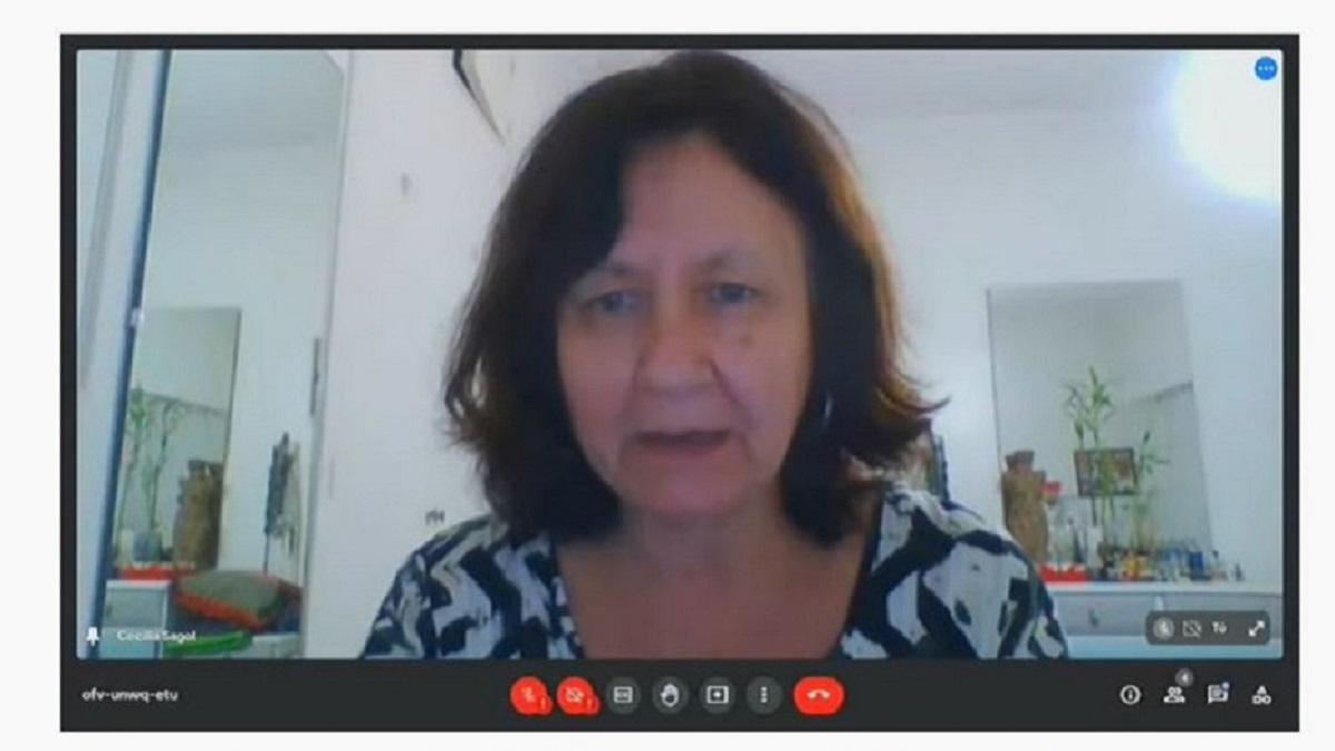 Cerró con gran participación de docentes el primer Congreso Virtual de Educación del Chubut.